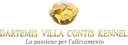 DARTEMIS VILLA CONTIS KENNEL